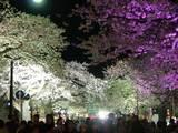 夜のお祭り