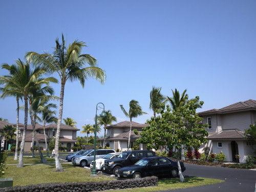 HAWAII-1 113_1