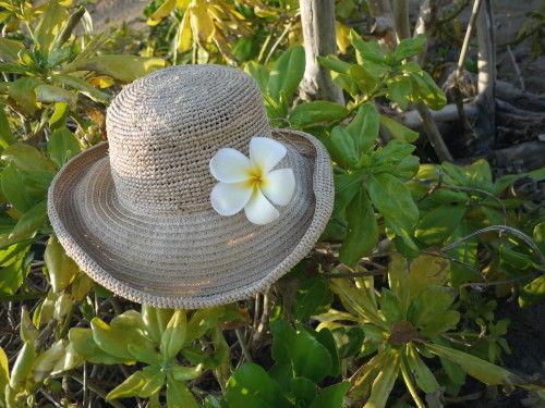 HAWAII-1 099_1