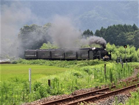 徳佐-船平山(2020.8.2)72 (2)