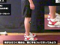 トウ・レイズ/前脛骨筋(すねの外側)