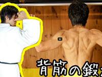 たくましい背中を目指せ!背中の筋肉トレーニング方法