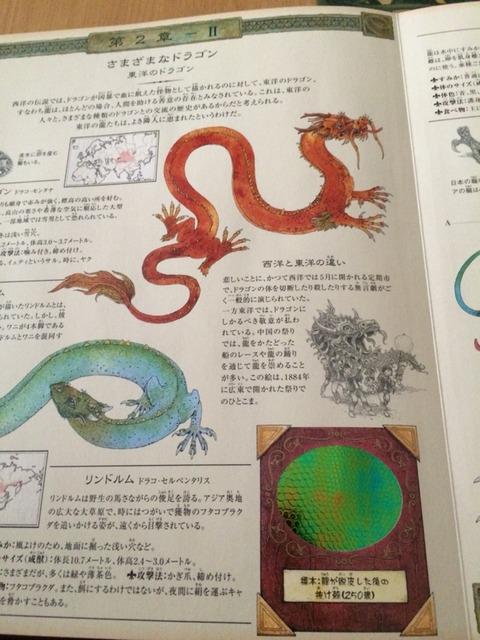 ドラゴン学02