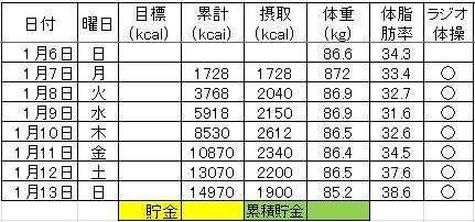 2_ダイエット記録130113