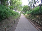 04けやき並木遊歩道