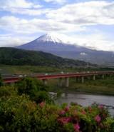 冨士川と冨士山