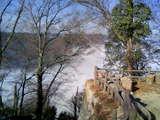 備中松山城の雲海