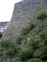 丸亀城08