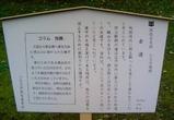 八王子城07古道