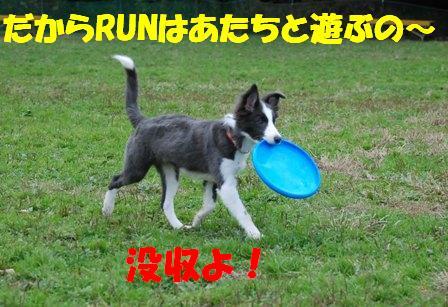 コピー ~ DSC_0558