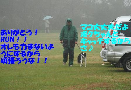 5a747166.jpg