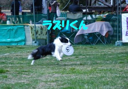コピー ~ DSC_0106