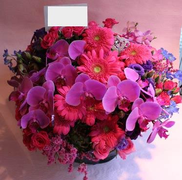 花ギフト|フラワーギフト|誕生日 花|カノシェ話題|スタンド花|ウエディングブーケ|花束|花屋|p-kochouran