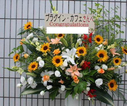 花ギフト|フラワーギフト|誕生日 花|カノシェ話題|スタンド花|ウエディングブーケ|花束|花屋|himawari