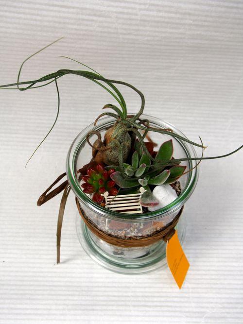 花ギフト|フラワーギフト|誕生日 花|カノシェ話題|スタンド花|ウエディングブーケ|花束|花屋|はやしさん