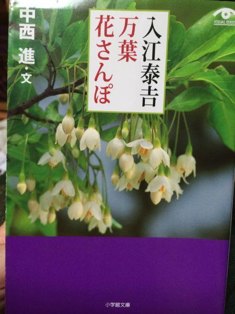 花ギフト|フラワーギフト|誕生日 花|カノシェ話題|スタンド花|ウエディングブーケ|花束|花屋|IMG_1803