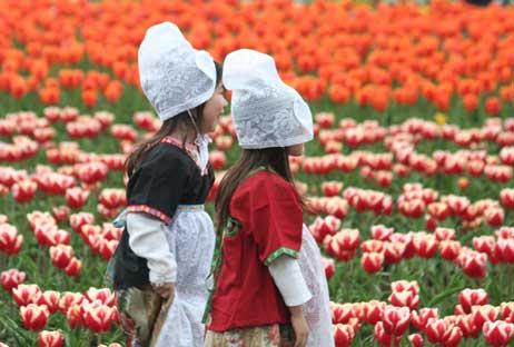 花ギフト|フラワーギフト|誕生日 花|カノシェ話題|スタンド花|ウエディングブーケ|花束|花屋|リップ1