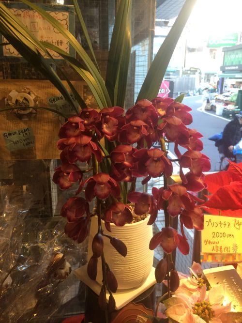 花ギフト|フラワーギフト|誕生日 花|カノシェ話題|スタンド花|ウエディングブーケ|花束|花屋|IMG_8449