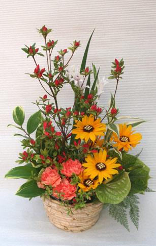 花ギフト|フラワーギフト|誕生日 花|カノシェ話題|スタンド花|ウエディングブーケ|花束|花屋|IMG_2819