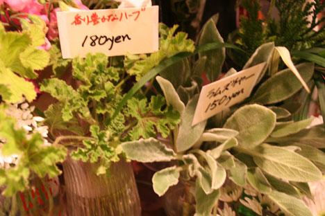 花ギフト フラワーギフト 誕生日 花 カノシェ話題 スタンド花 ウエディングブーケ 花束 花屋 ハーブ