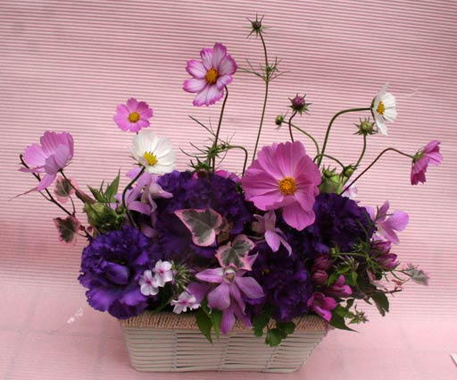 花ギフト|フラワーギフト|誕生日 花|カノシェ話題|スタンド花|ウエディングブーケ|花束|花屋|秋桜