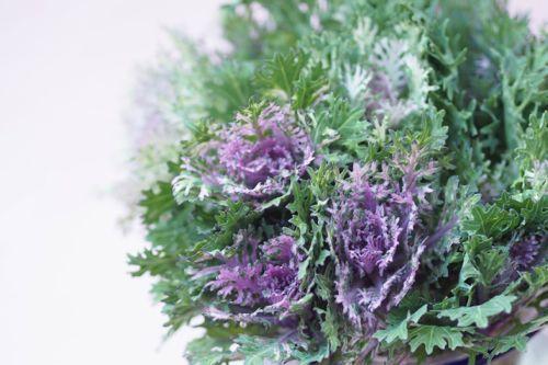 花ギフト|フラワーギフト|誕生日 花|カノシェ話題|スタンド花|ウエディングブーケ|花束|花屋|IMG_8671