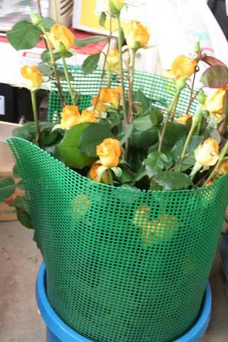 花ギフト|フラワーギフト|誕生日 花|カノシェ話題|スタンド花|ウエディングブーケ|花束|花屋|パレオ