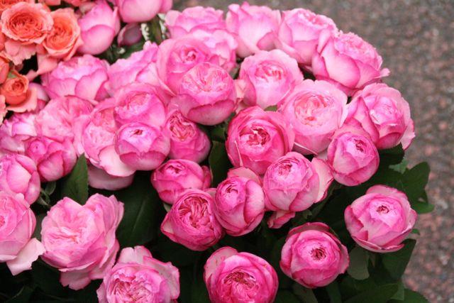 花ギフト|フラワーギフト|誕生日 花|カノシェ話題|スタンド花|ウエディングブーケ|花束|花屋|IMG_9719