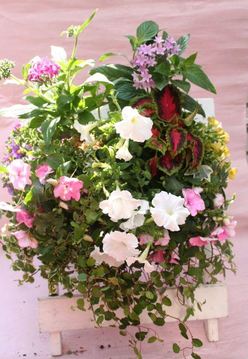 花ギフト|フラワーギフト|誕生日 花|カノシェ話題|スタンド花|ウエディングブーケ|花束|花屋|IMG_0287