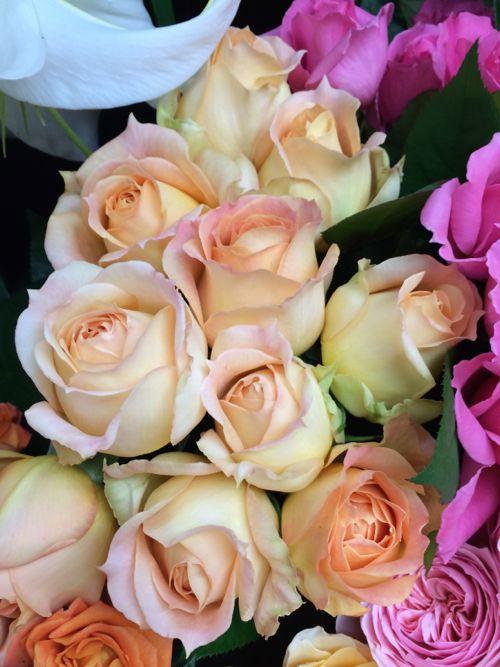 花ギフト|フラワーギフト|誕生日 花|カノシェ話題|スタンド花|ウエディングブーケ|花束|花屋|IMG_4268