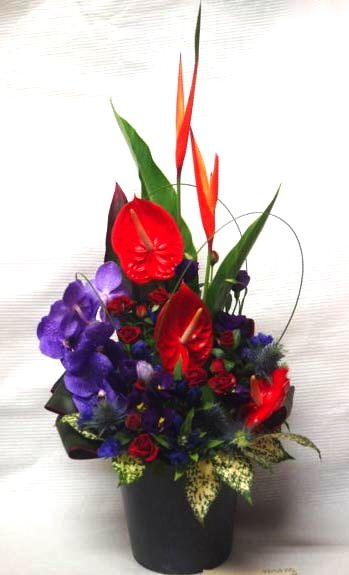 花ギフト|フラワーギフト|誕生日 花|カノシェ話題|スタンド花|ウエディングブーケ|花束|花屋|00049933(1)