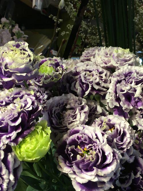 花ギフト|フラワーギフト|誕生日 花|カノシェ話題|スタンド花|ウエディングブーケ|花束|花屋|IMG_0481