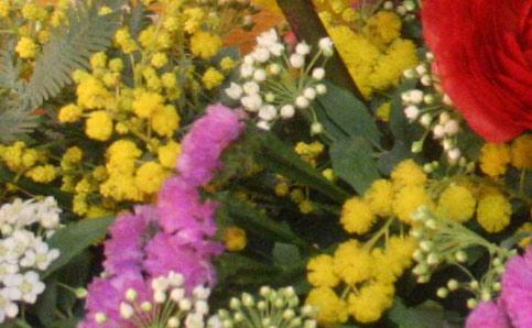 花ギフト|フラワーギフト|誕生日 花|カノシェ話題|スタンド花|ウエディングブーケ|花束|花屋|mimo
