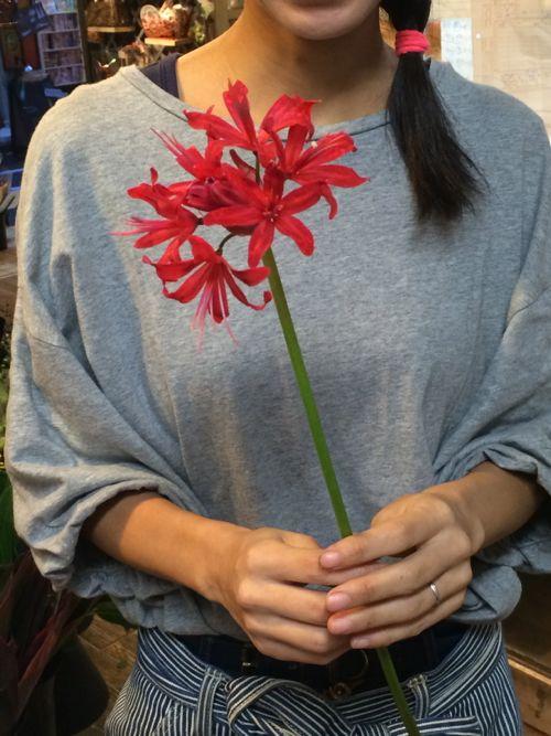 花ギフト|フラワーギフト|誕生日 花|カノシェ話題|スタンド花|ウエディングブーケ|花束|花屋|IMG_7306