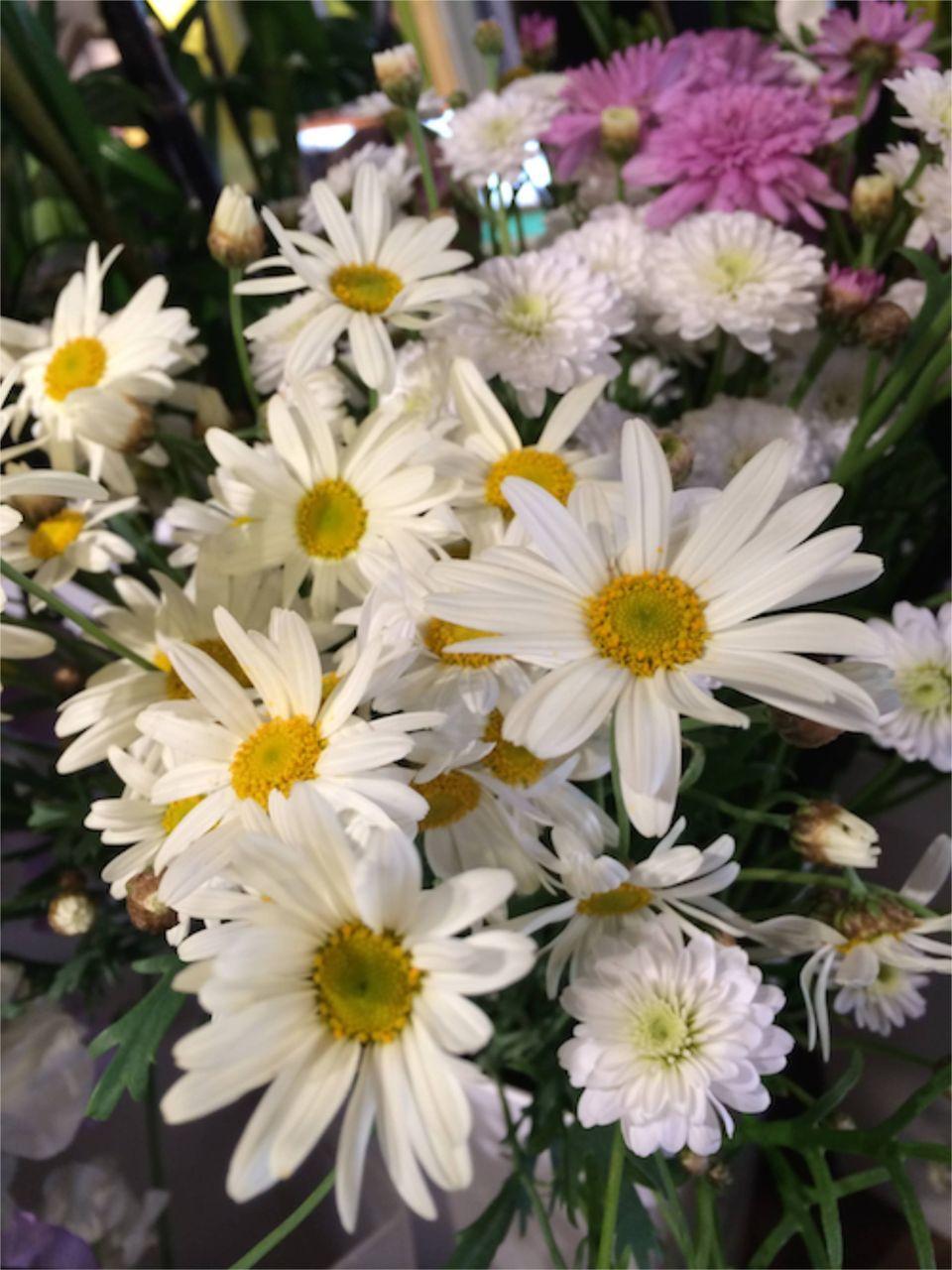 花ギフト|フラワーギフト|誕生日 花|カノシェ話題|スタンド花|ウエディングブーケ|花束|花屋|IMG_4182
