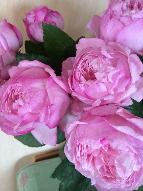 花ギフト|フラワーギフト|誕生日 花|カノシェ話題|スタンド花|ウエディングブーケ|花束|花屋|IMG_4890
