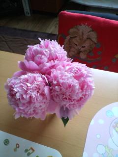 花ギフト|フラワーギフト|誕生日 花|カノシェ話題|スタンド花|ウエディングブーケ|花束|花屋|たむちゃんち