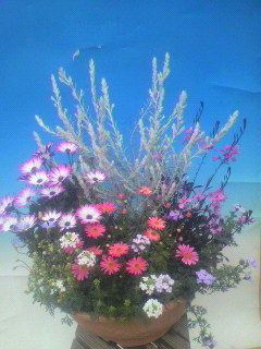 花ギフト|フラワーギフト|誕生日 花|カノシェ話題|スタンド花|ウエディングブーケ|花束|花屋|14488