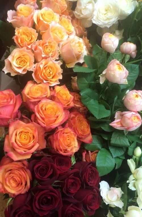花ギフト|フラワーギフト|誕生日 花|カノシェ話題|スタンド花|ウエディングブーケ|花束|花屋|IMG_8098