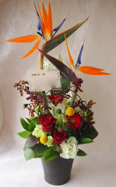 花ギフト|フラワーギフト|誕生日 花|カノシェ話題|スタンド花|ウエディングブーケ|花束|花屋|47330