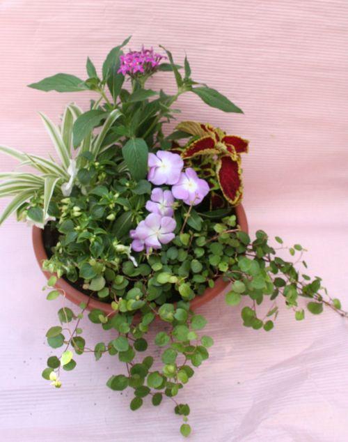 花ギフト|フラワーギフト|誕生日 花|カノシェ話題|スタンド花|ウエディングブーケ|花束|花屋|IMG_0282