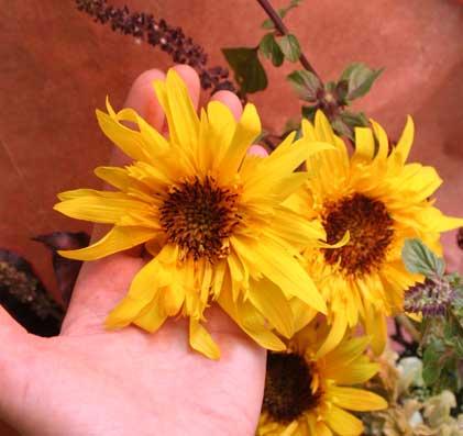 花ギフト|フラワーギフト|誕生日 花|カノシェ話題|スタンド花|ウエディングブーケ|花束|花屋|パナッシェ
