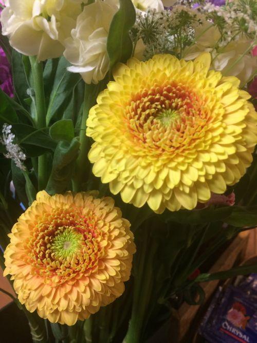 花ギフト|フラワーギフト|誕生日 花|カノシェ話題|スタンド花|ウエディングブーケ|花束|花屋|IMG_8452