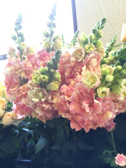 花ギフト|フラワーギフト|誕生日 花|カノシェ話題|スタンド花|ウエディングブーケ|花束|花屋|IMG_5104