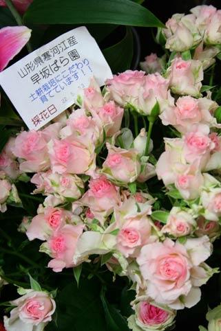 花ギフト|フラワーギフト|誕生日 花|カノシェ話題|スタンド花|ウエディングブーケ|花束|花屋|hayasakasan