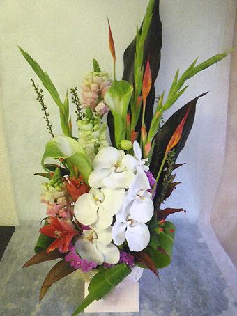 花ギフト|フラワーギフト|誕生日 花|カノシェ話題|スタンド花|ウエディングブーケ|花束|花屋|胡蝶蘭