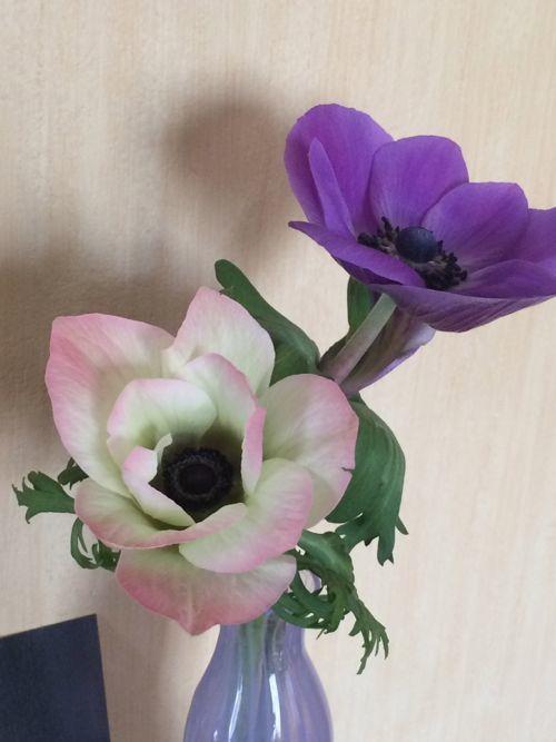 花ギフト|フラワーギフト|誕生日 花|カノシェ話題|スタンド花|ウエディングブーケ|花束|花屋|IMG_9202