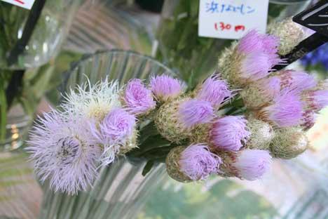 花ギフト|フラワーギフト|誕生日 花|カノシェ話題|スタンド花|ウエディングブーケ|花束|花屋|しおん