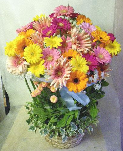 花ギフト|フラワーギフト|誕生日 花|カノシェ話題|スタンド花|ウエディングブーケ|花束|花屋|ガーベラ じゅん