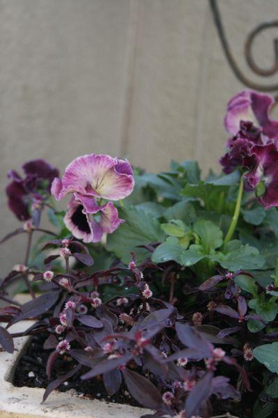 花ギフト|フラワーギフト|誕生日 花|カノシェ話題|スタンド花|ウエディングブーケ|花束|花屋|IMG_6598